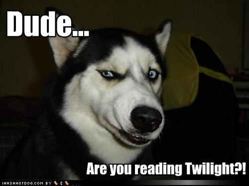 dude_twilight